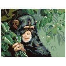 GI 304098 Диамантен гоблен - Маймуна
