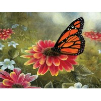 FL 304097 Пеперуда и цветя - Диамантен гоблен