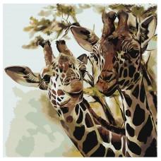 Картина по номера - Жирафи ZP-024