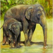 Картина по номера - Слонове  ZP-080