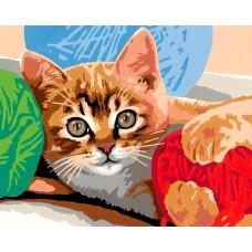 Игра на котка - Картина по номера CX 3536