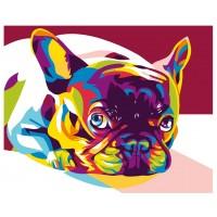 Шарено куче - Картина по номера CX 3670