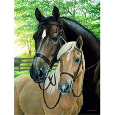 GI 304160 Прекрасни коне - Диамантен гоблен
