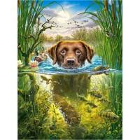 GI 304163 Куче в езерцето - Диамантен гоблен