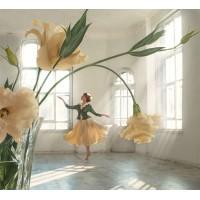 Цветна балерина - диамантен гоблен LD 404057