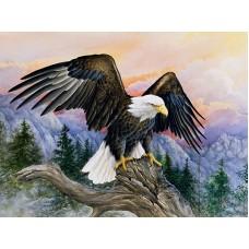 Величествен орел - Диамантен гоблен GI 405074