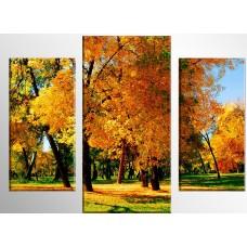 TRP 0010 Диамантен гоблен - Приказна есен